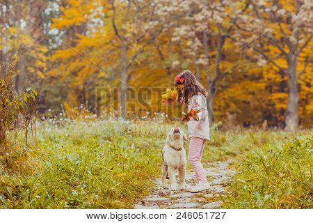 Cute Little Girl And Golden Retriever Dog With Bright Colored Leaves Walking In The Autumn Park