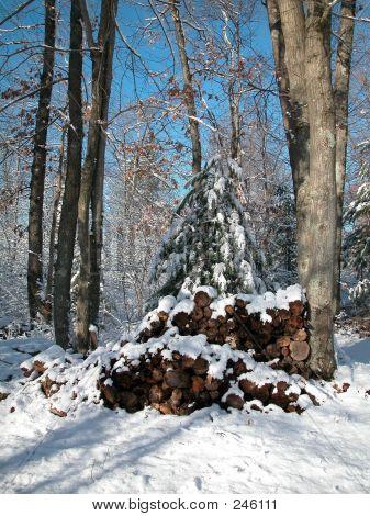 Snow Storm0002