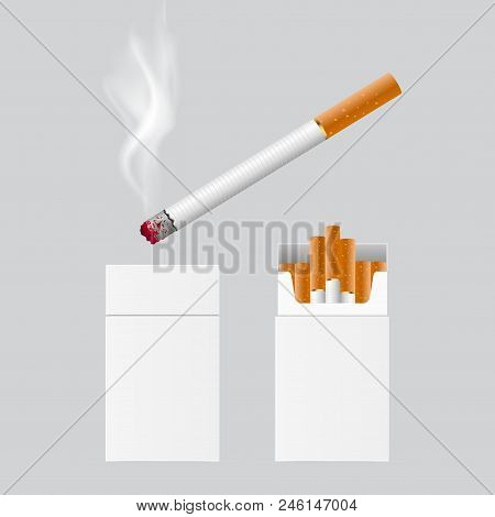 Realistic Cigarette Packing And Burning One. Vector