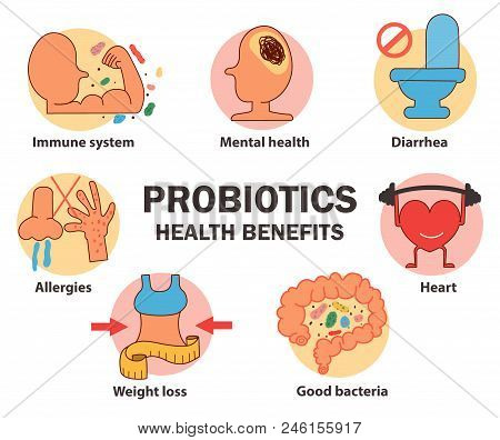 The Concept Of Probiotics Health Benefits, Protect And Prevent Diseases Illustration, All Elements O