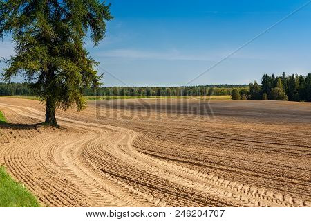 The plowed field. Furrow go to the horizon. The sowing of winter crops. Agricultural work. Sandy soil. Loam. Poor soils. poster