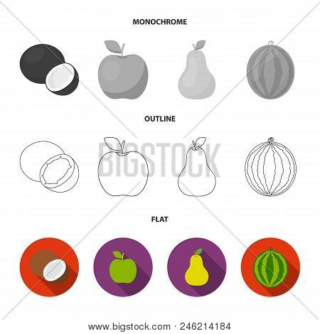 Coconut, Apple, Pear, Watermelon.fruits Set Collection Icons In Flat, Outline, Monochrome Style Vect