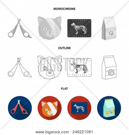 Scissors, Cat, Bandage, Wounded .vet Clinic Set Collection Icons In Flat, Outline, Monochrome Style