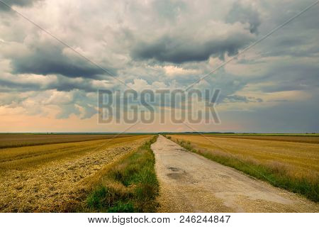 Country Road Through Fields. Countryside Landscape. Countryside. Wheat Food Production, Agriculture