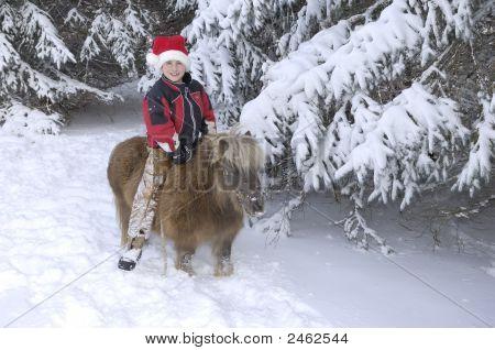 Boy And Pony