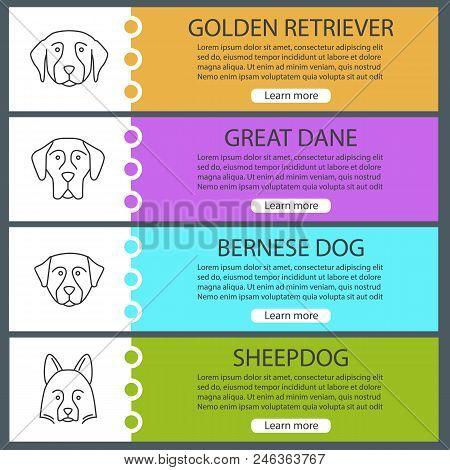 Dogs Breeds Web Banner Templates Set. Golden Retriever, Great Dane, Bernese Dog, Shetland Sheepdog.