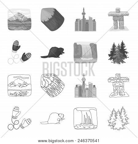 Canadian Fir, Beaver And Other Symbols Of Canada.canada Set Collection Icons In Outline, Monochrome