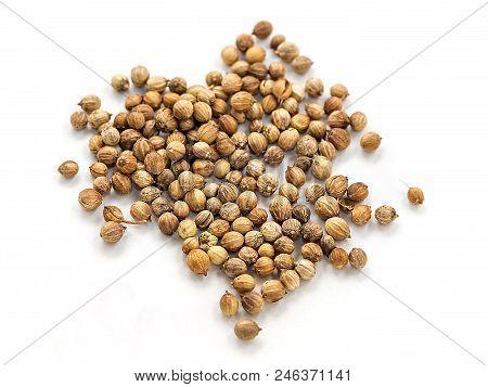 Seeds Of Coriander On A White Background. Cilantro Isolated. Coriandrum Sativum. Common Seeds.