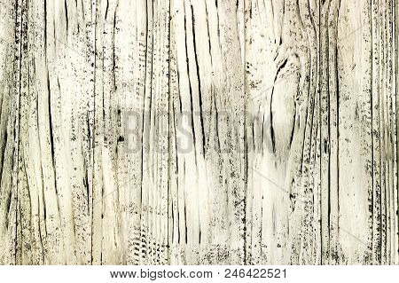 Wooden Background.  Old Wooden Texture. Wooden Background  Old Wooden Texture. Wooden Background.