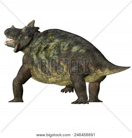 Estemmenosuchus Mirabilis Dinosaur Tail 3d Illustration - Estemmenosuchus Mirabilis Was An Omnivorou
