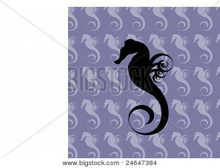 Sea horse background