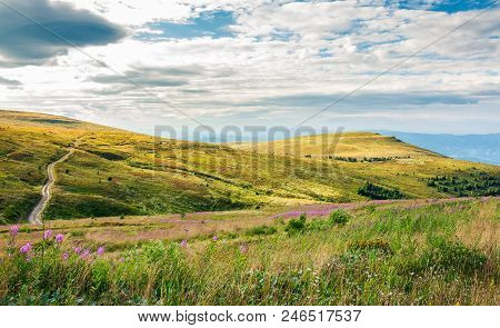 Hills Of Runa Mountain In Late Summer. Lovely Landscape With Fire Weed Flowers In Front And Forest I
