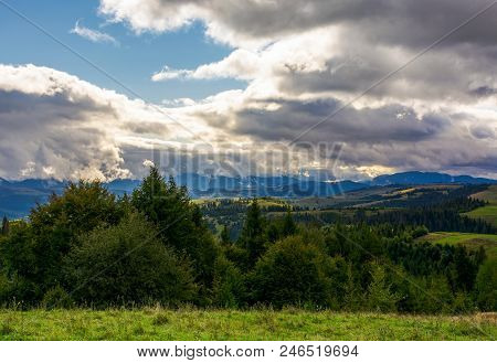 Path In The Grass On Top Of A Slope Of Mountain Range With Coniferous Forest