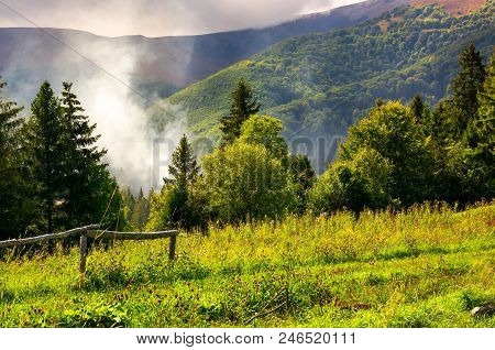 Smoke From The Fire In Forest. Mountainous Summer Landscape. Environmental Problem And Ecology Disas