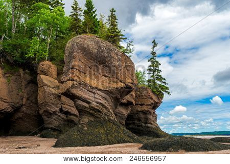 The Hopewell Rocks also known as the flowerpot rocks, along the Bay of Fundy, New Brunswick, Canada.