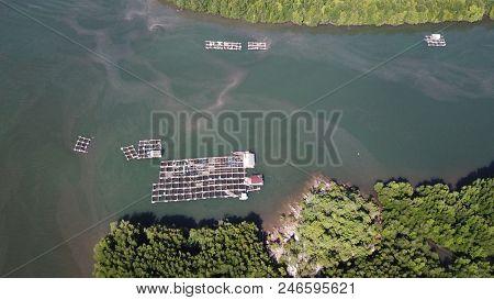 Aerial photo fish farm (aquaculture) for shrimp production in Thailand    poster
