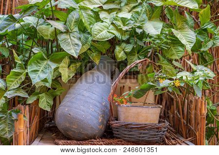 Blue Pottery Container And Wicker Basket Framed By Wooden Cage, Green Leaves And Assembled Reeds