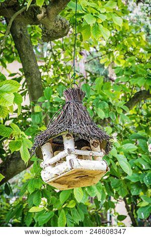 Wooden bird house hanging on the green tree. Ornithology theme. Seasonal natural scene. poster