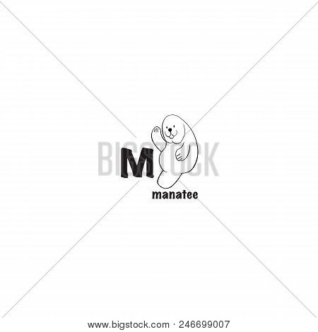 Manatee Coloring Page Isolated On White Background