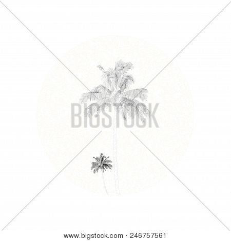 Hand Drawing Style Palm Trees Over Textured Circular Border