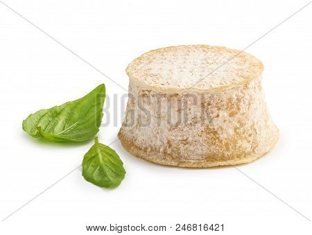 Crottin Cheese With Basil Leaves Isolated On White Background