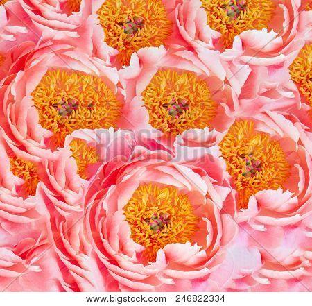 pink floral background . digital artwork