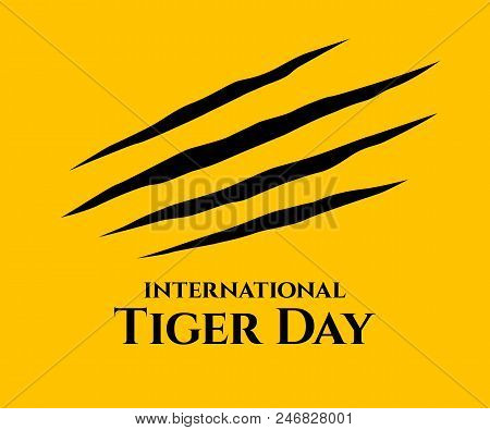 International Tiger Day. Scrapes From The Claws Of A Tiger.  Four Nails Trace. July 29. Template For