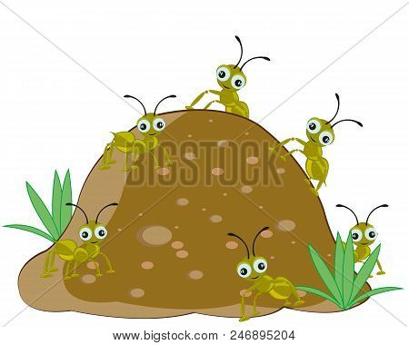 Big Anthill With Insect Ant On White Background