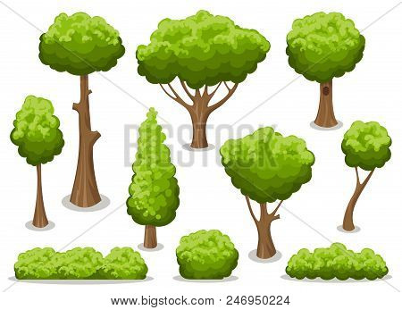 Cartoon Bush And Tree Set. Vector Trees And Bushes Isolated On White Background, Nature Green Forest