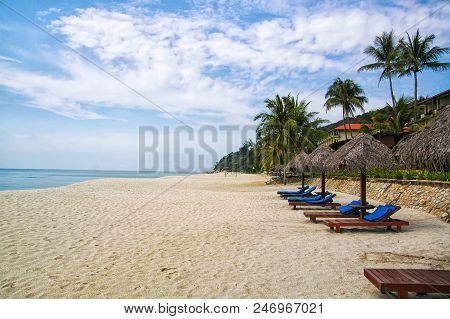 Sand Tropic Palms And Sunbeds. Best Kuantan Beach Resorts. Luxury Vacation At Crystal Clear Waters A