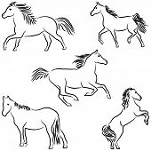 Five stylized horses isolated on white background. poster