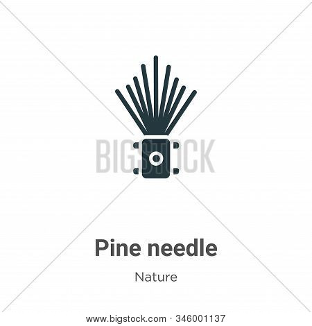 Pine needle icon isolated on white background from nature collection. Pine needle icon trendy and mo