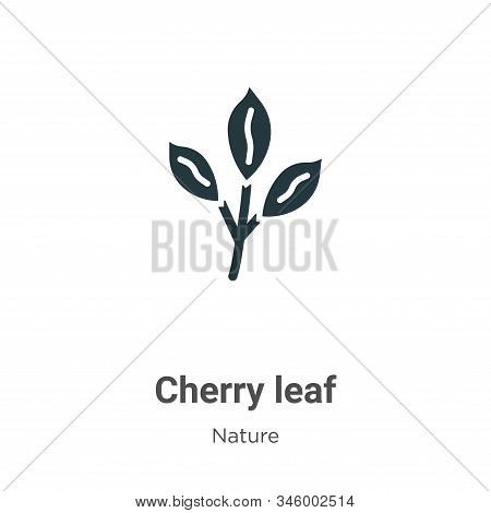 Cherry leaf icon isolated on white background from nature collection. Cherry leaf icon trendy and mo