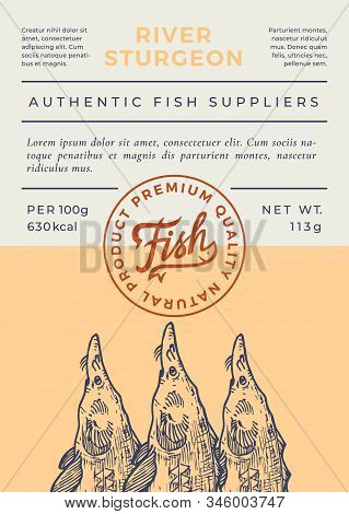 River Fish Abstract Vector Packaging Design Or Label. Modern Typography Banner, Hand Drawn Sturgeon