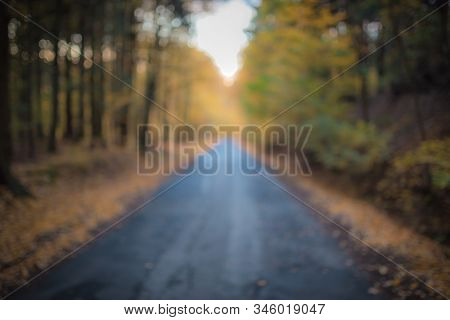 Beautiful Out Of Focus Autumn Forest With Road And Sunlight. Useful As Backgroud. Tarmac Road In The