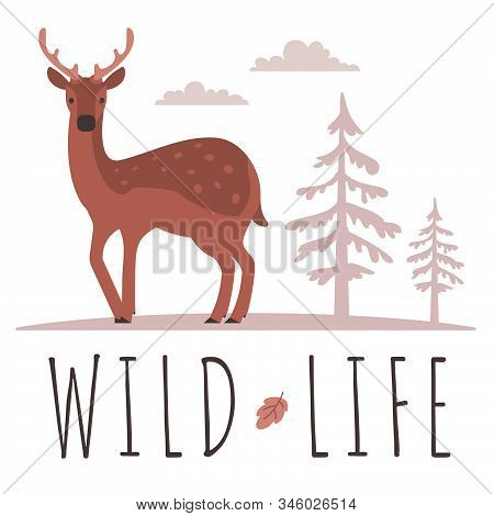 Vector Illustration Of Beautiful Female Deer With Horn And Spot On Back In Forest On White Backgroun