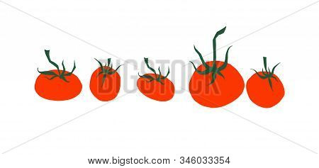 Tomato Cartoon Collection. Small And Big Fresh Red Ripe Tomatoes With Green Leaves Cherry Tomato Iso