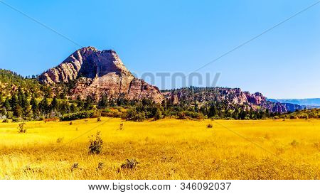 The Grasslands And Pine Valley Peak On The Kolob Plateau In Zion National Park, Utah, United States.