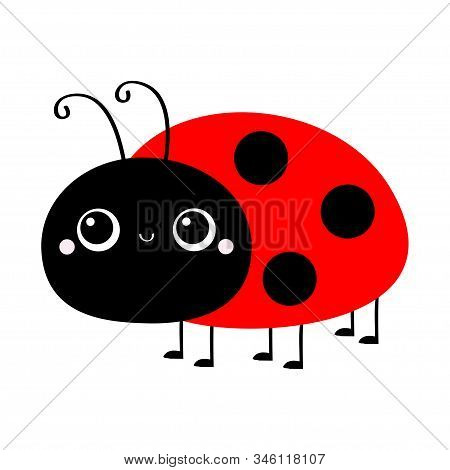 Ladybug Ladybird Icon. Cute Cartoon Kawaii Smiling Baby Animal Character. Funny Insect. Flat Design.