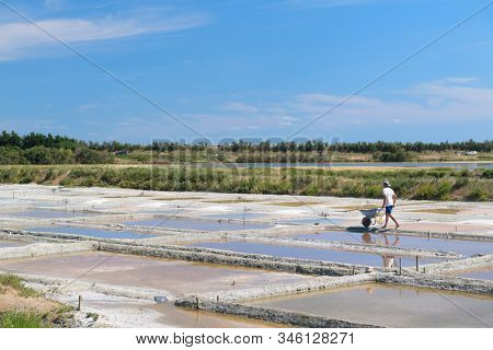 ILE DE RE - FRANCE - JUNE 29, 2018: Sea salt harvest in small bassins on june 29, 2018
