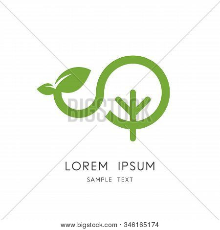 Green Sprout Logo - Tree And Shoot With Leaves Symbol. New Life In Nature, Vegetative Reproduction A