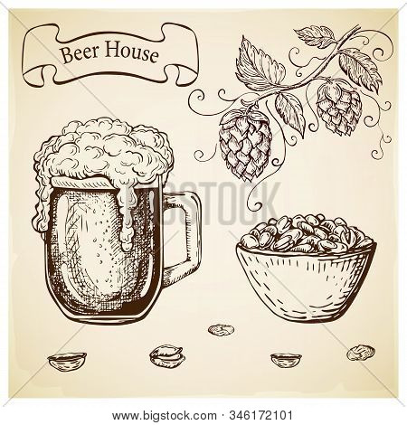 Hand Drawn Etched Beer Glass And Pistachios In Bowl Isolated. Set Of Pub Or Oktoberfest Elements In