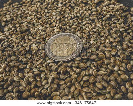Two Euro Coin And Cannabis, Marijuana, Light Drugs Prescribe, Alternative Remedy. Hemp Seeds. View F