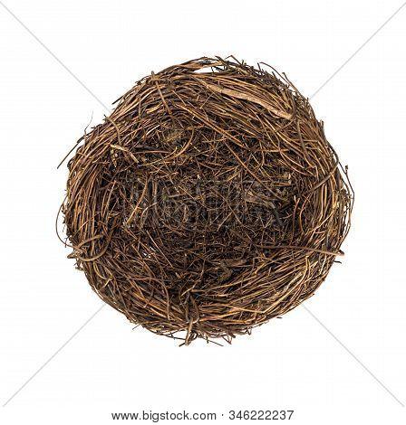 Bird's Nest, Easter Mood.