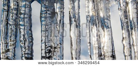 Large Transparent Plumps In Sunlight. Background From Icicles.