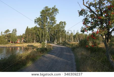 Small Gravel Road Close To The Seaside. Trees And Grass In The Surrounding. Morning.
