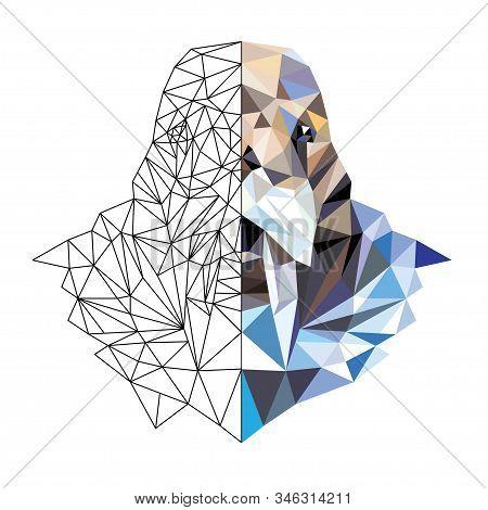 Polygonal Portrait Of A Walrus . Vector Illustration