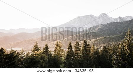 Morning Sun Over Spruce Covered Hills In Tatra Mountains