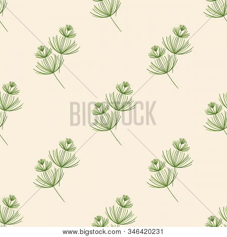 Seamless Botanical Pattern. Herbaceous Plants With Soft Thin Leaves . Horsetail, A Medicinal Plant.