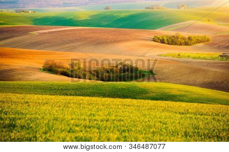 Fantastic view on of sunlit wavy fields of agricultural area. Location place of South Moravia region, Czech Republic, Europe. Minimalistic landscape of agrarian industry. Discover the beauty of world.